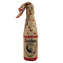 Cerveja Bacchus Kriekenbier Garrafa 375ml