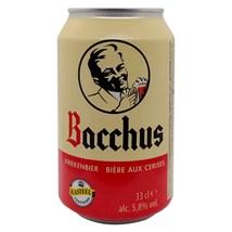 Cerveja Bacchus Kriekenbier Lata 330ml