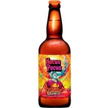 Cerveja Hocus Pocus Orange Sunshine Garrafa 500ml