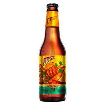 Cerveja Júpiter Lake Balboa 355ml