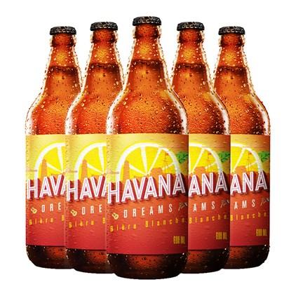 Kit de Cervejas Havana Dreams 600ml - Compre 3 Leve 5